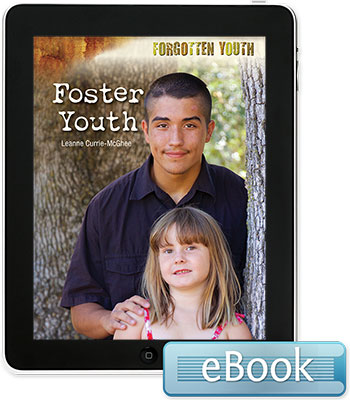 Forgotten Youth: Foster Youth eBook