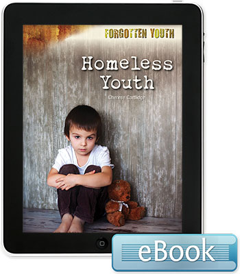 Forgotten Youth: Homeless Youth eBook