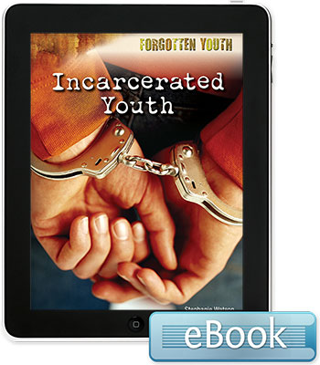 Forgotten Youth: Incarcerated Youth eBook