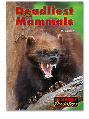 Deadliest Predators: Deadliest Mammals