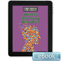 Understanding Mental Disorders: What Is Self-Injury Disorder? Ebook