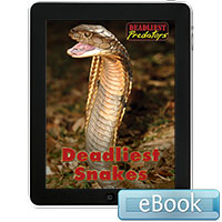 Deadliest Predators: Deadliest Snakes eBook