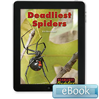 Deadliest Predators: Deadliest Spiders eBook